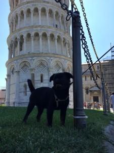 archie---hugo-13.8.2015-italie.-.--.jpg
